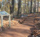 Spicebush Nature Trail with map