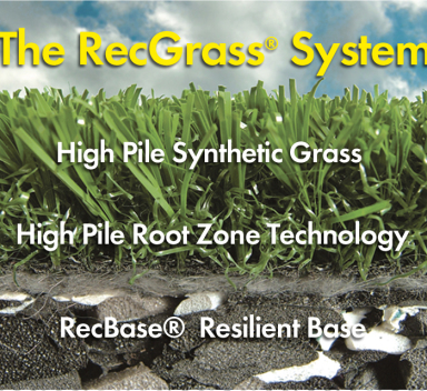 the recgrass system